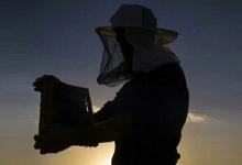زهر تا عسل؛ حکایت تلخ و شیرین کارآفرین کردستانی
