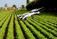بهبود فضای کسب و کار در سایه کشاورزی دیجیتال